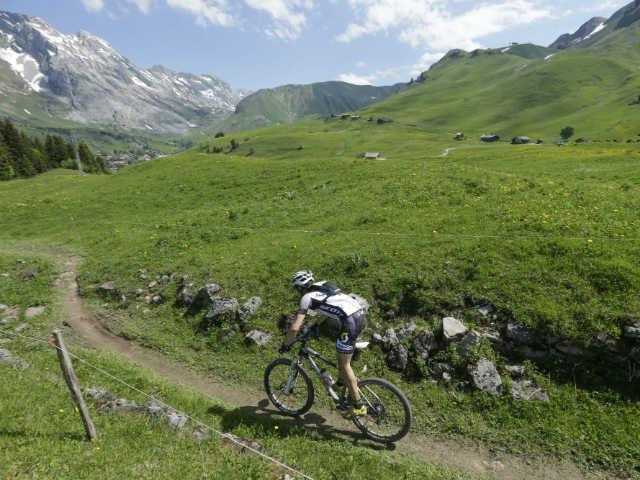 Roc des Alpes